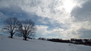 Sun and Clouds, Stroud Preserve, West Chester, PA